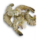 Креветка королевская сыро-мороженая, без головы, 41/50, без льда, Индия, 1 кг