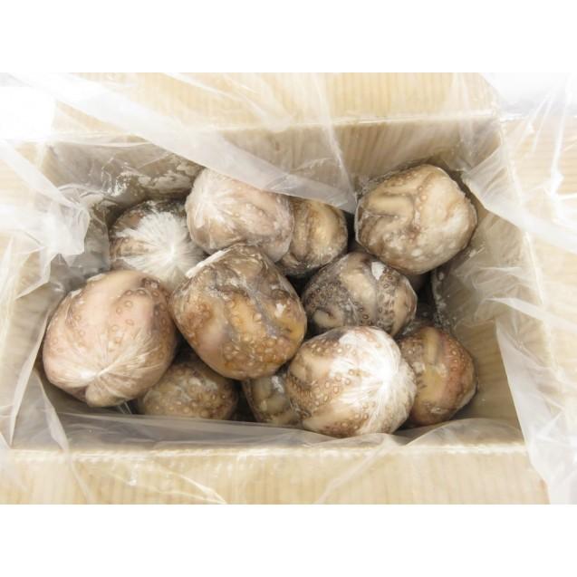 Осьминог очищенный (0,45 - 0,9 кг), Индонезия, 1кг