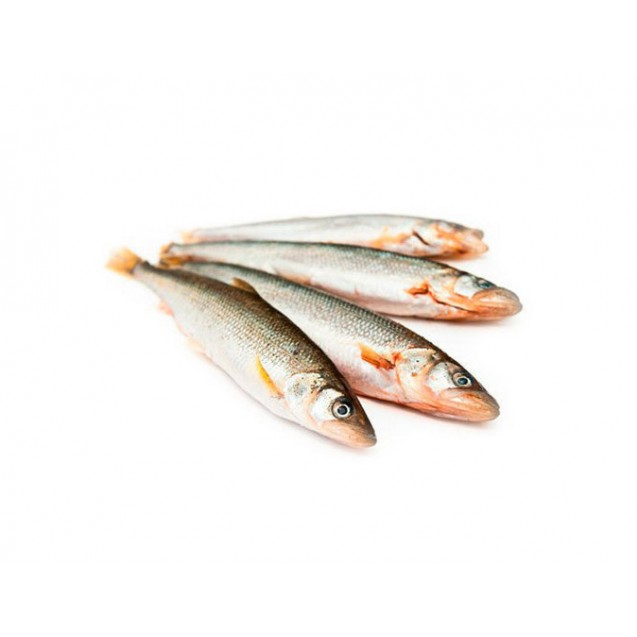 Навага дальневосточная, целая (Рыбхолкам) штучной заморозки, Камчатка, 1 кг