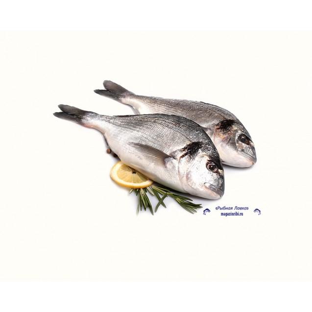 Дорадо (300-400 гр.), неразделанная, Турция, 1 кг