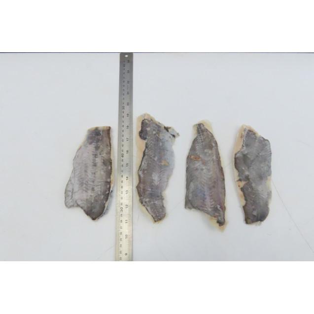 Филе хоки на коже (50-110гр.), проложенное, изготовлена в море, Аргентина, 6,8 кг