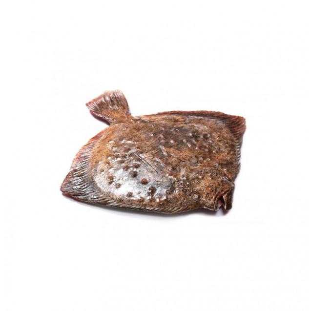 Калкан (камбала) черноморская, неразделанная (2+ кг) Крым, 1 кг