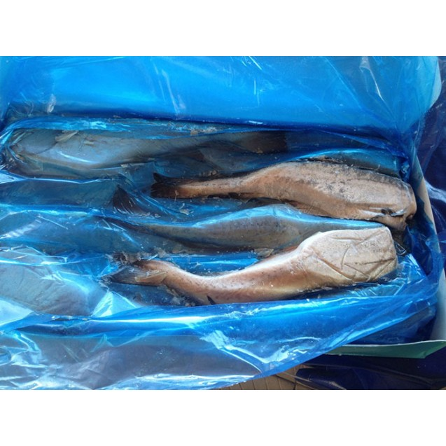 Минтай потрошенный без головы (25см +), сухой заморозки, проложенное, изготовлено в море, Дальний Восток, 6,5 кг